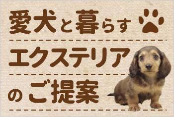 愛犬と暮らすエクステリアのご提案